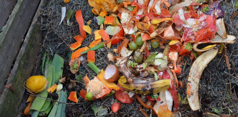 Composting at Home or at your Business!